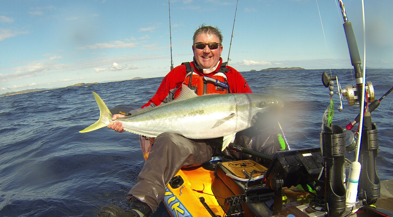 Kayak sup australia live bait fishing for kingfish for Live bait fishing