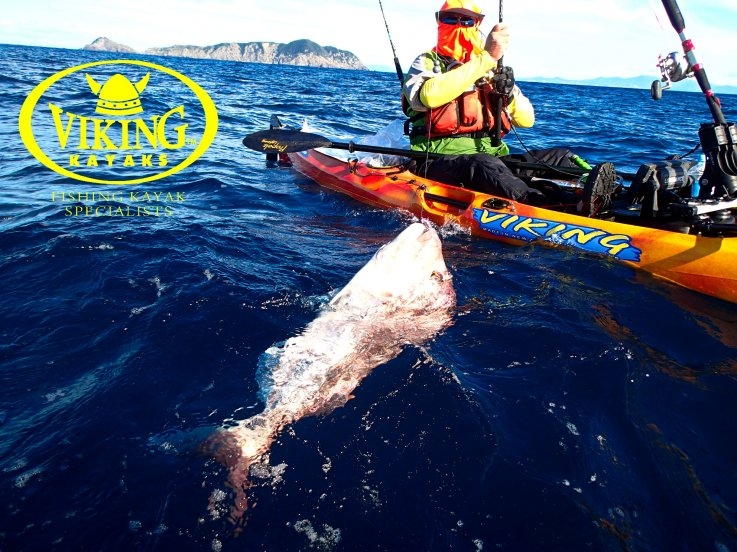 Viking Kayaks Australia - Long or short rods for kayak fishing