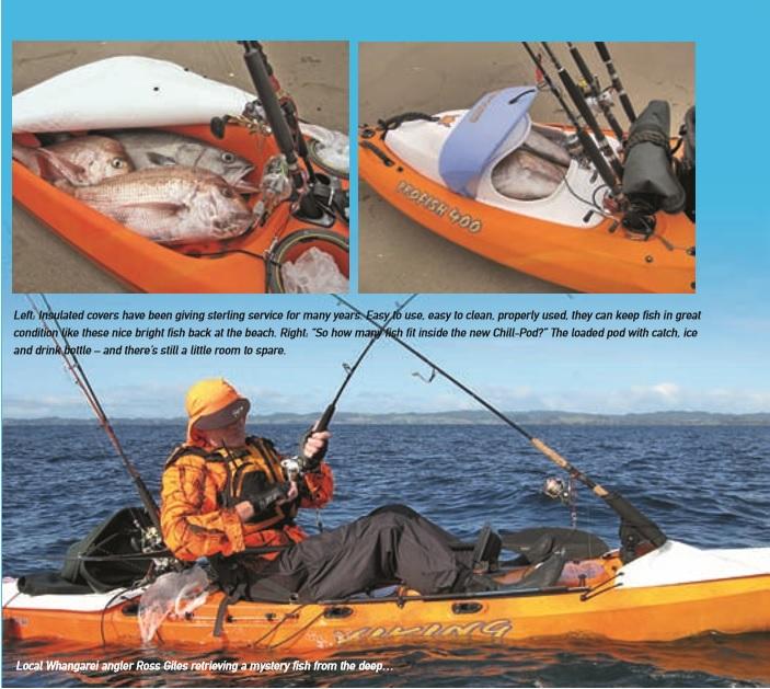 Viking kayaks australia keeping catch cool and fresh for Kayak fish stringer
