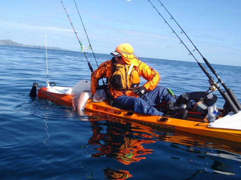 Viking kayaks australia when kayak fishing i wouldn 39 t be for Kayak fish stringer