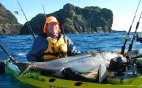 Kayak Fishing for XO kingfish at 3 Kings