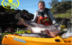 Kayak fishing for NZ Groper / Hapuku